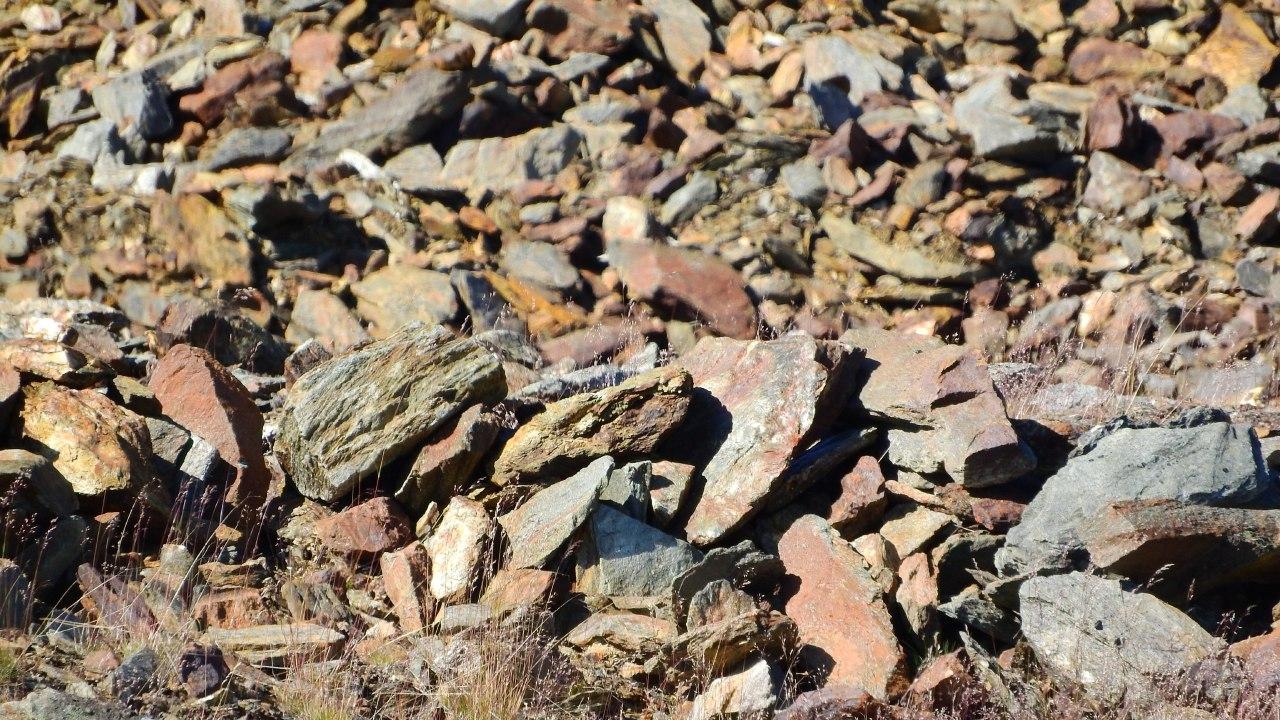 119 млн. тонн руды добыли в 2019 году в Казахстане